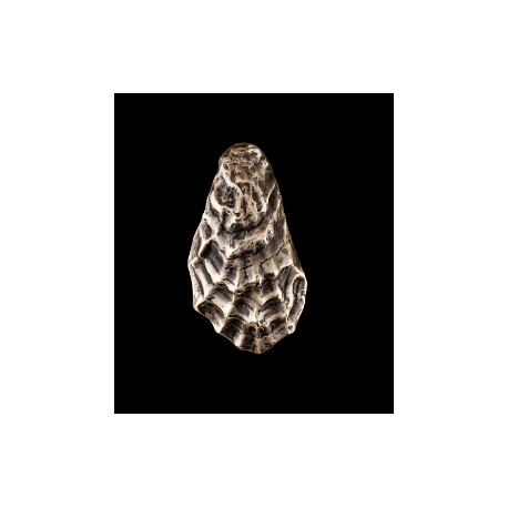 Merveilleux Oyster Shell Door Knocker