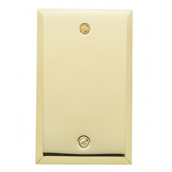 Polished Brass Blank Switch Plate