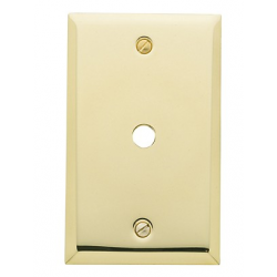 Polished Brass Cable Switch Plate