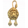 Lion Doorknocker with Paws and Tail