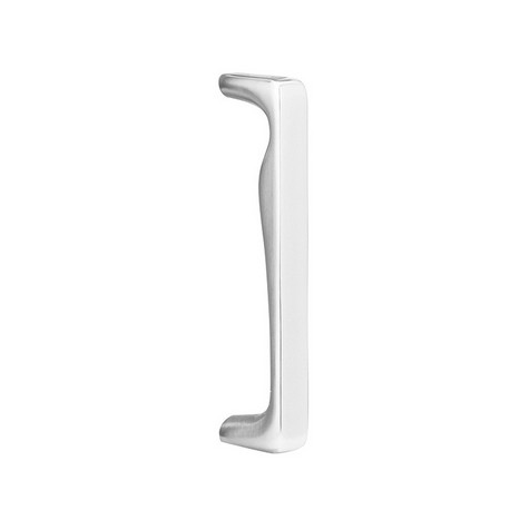 Stainless Steel Zeus Door Pull 8""